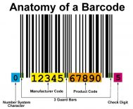 Penjelasan Mengenai Anatomi Barcode
