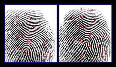 Proses Cara Kerja Absensi Fingerprint